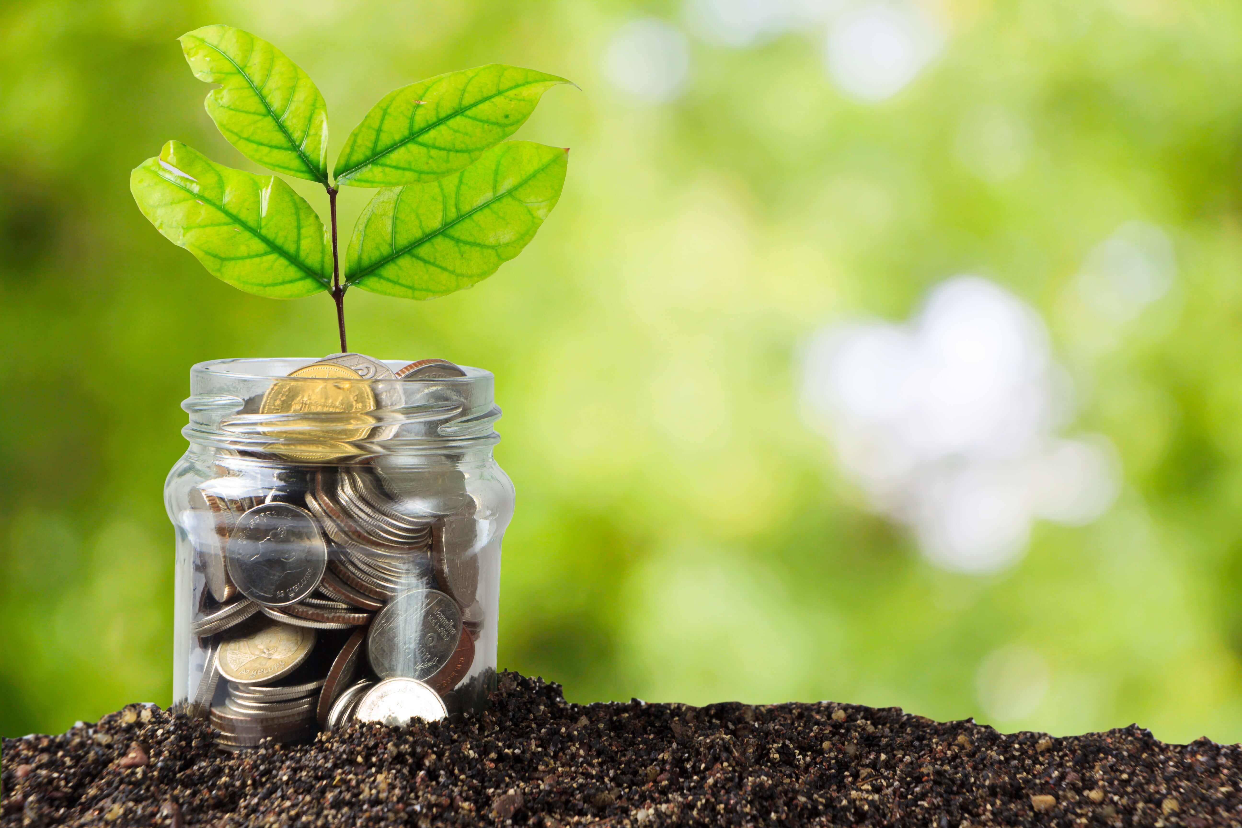 nuevos-subsidios-propietarios